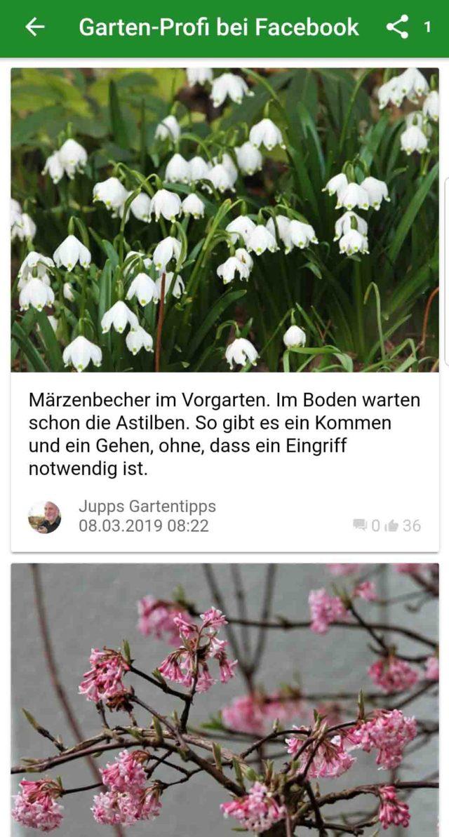 App des Monats Garten Ratgeber