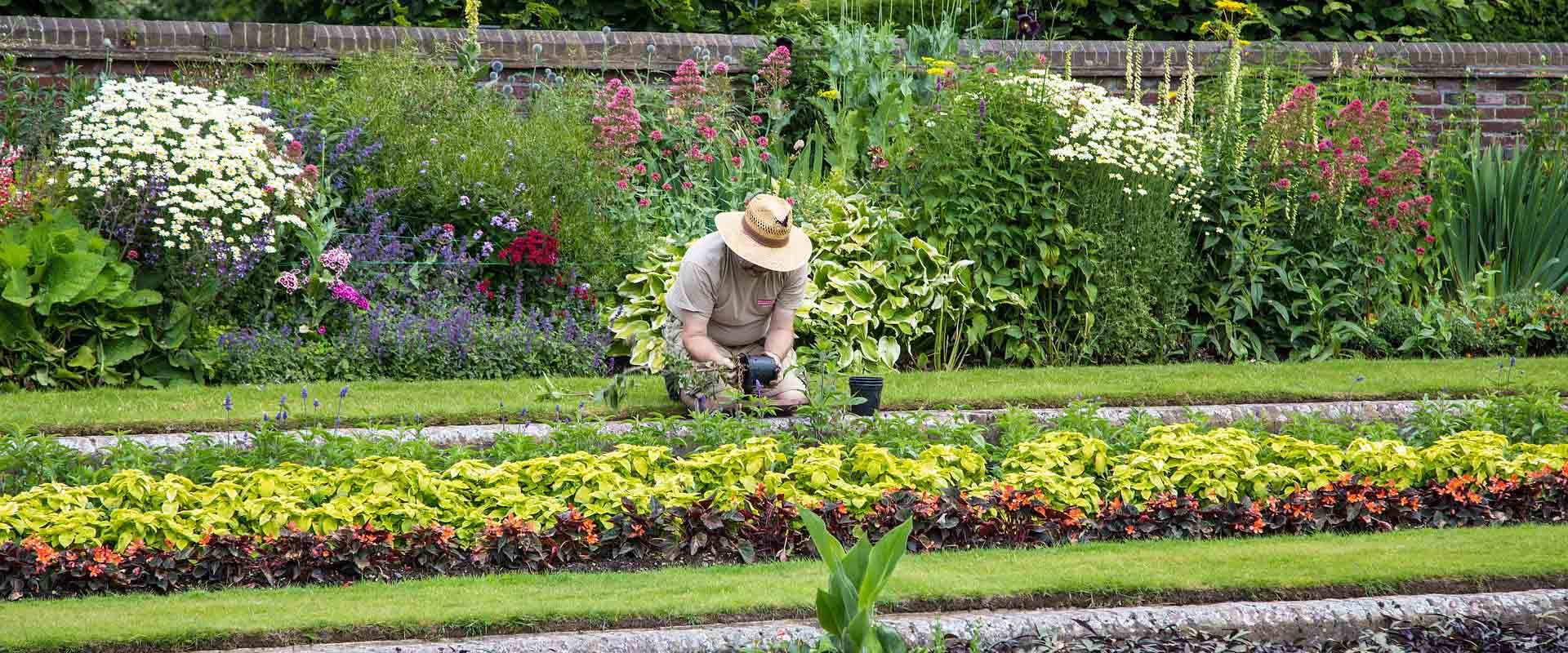 Permalink zu:App des Monats: Garten Ratgeber